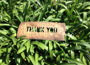 KC's July Blog:  Gratitude